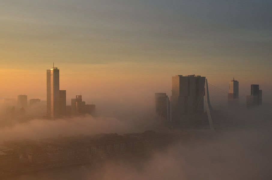Rotterdam belicht door de vroege ochtend Zon