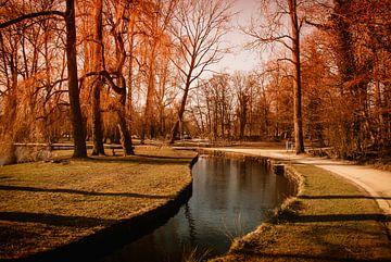 Herbst in der Park von Manuel Declerck
