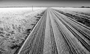 Zwartwit foto Landschap Namibië, Afrika van