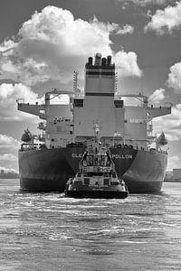 Clearocean op het Noordzeekanaal van Foto Amsterdam / Peter Bartelings