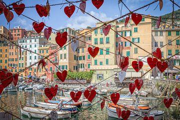 Haven van Camogli, Italië van Annette Roijaards