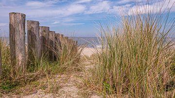 Zum Strand von Friedhelm Peters