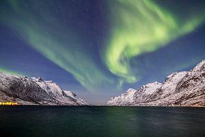 Northern Lights above Fjord