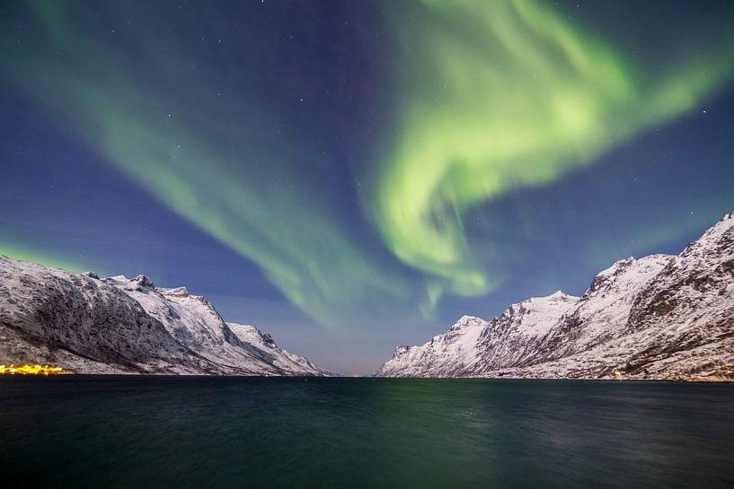 Northern Lights above Fjord von Freek van den Driesschen