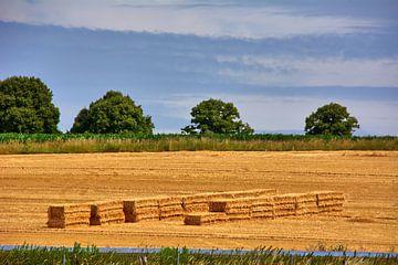 Bauernland 2 van Edgar Schermaul