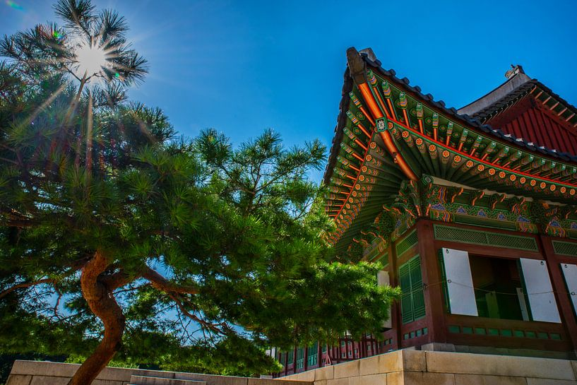 """""""Verblijf"""" in Zuid Koreaans paleis van Kaj Hendriks"""