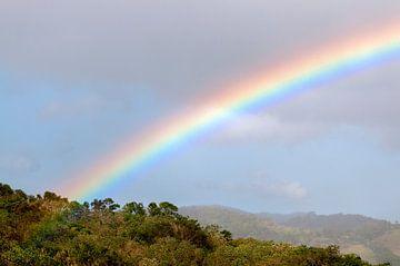 Costa Rica: Regenboog bij Los Tornos van Maarten Verhees