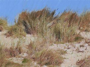 Herbe des dunes dans le vent - Herbe des dunes - Herbe du casque - Peinture sur Schildersatelier van der Ven