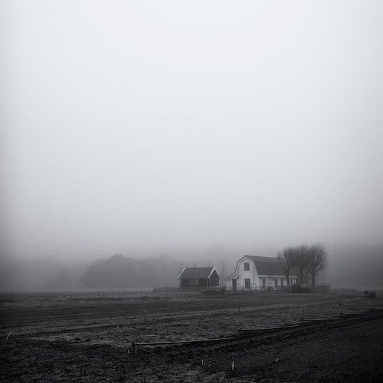 Boerderij in de mist, Heemskerk