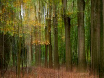 Trillende bomen van Henk Goossens