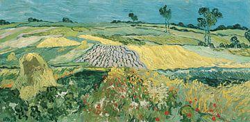 Die Ebene von Auvers, Vincent van Gogh