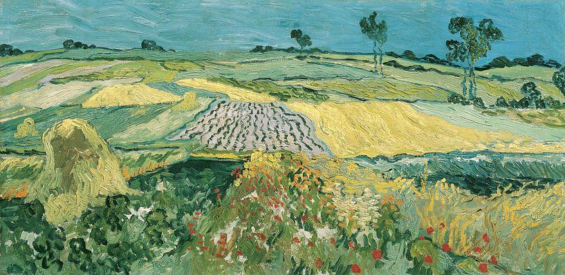 Die Ebene von Auvers, Vincent van Gogh von Meesterlijcke Meesters