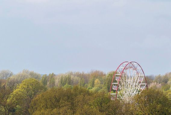 Landschap, reuzenrad in het bos tijdens zomerse dag van Marcel Kerdijk