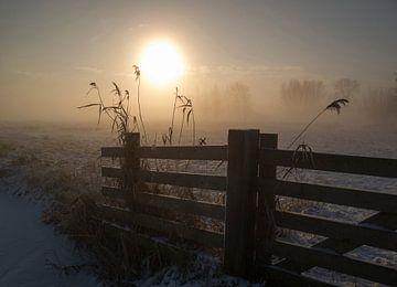 Winter stemming, Alida van Zaane van 1x