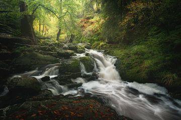 Mystic river van Roelie Steinmann