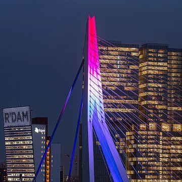 Rotterdamer Erasmus-Brücke in der Nähe des Platzes von Leon van der Velden