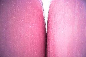 Kinky Pink von Sonja Pixels