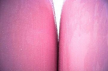 Kinky Pink van Sonja Pixels