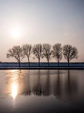 Bomen bij zonsondergang van Mattijs Diepraam