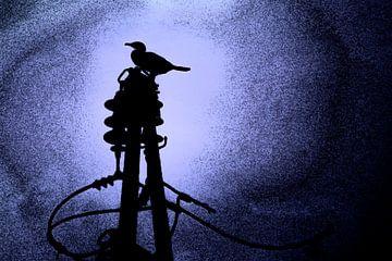 Aalscholver bij nacht van Studio Kunsthart
