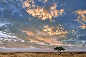 Wolkenstimmung über dem Etosha Nationalpark Namibia