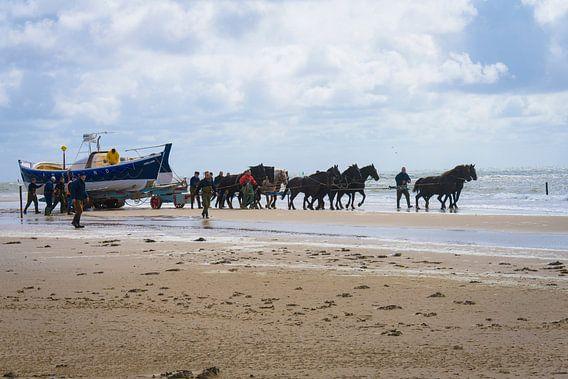 Paardenreddingsboot Ameland van Marjan Noteboom