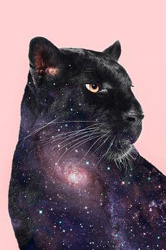 Galaxy Panther von Jonas Loose