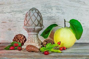 Herfststilleven met voedsel, kweepeer fruit, rode rozenbottels, bladeren van Alex Winter