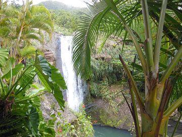 Waterval in jungle van St Lucia von Ricky Mc Cracken
