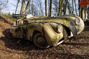 Verlassener Jaguar