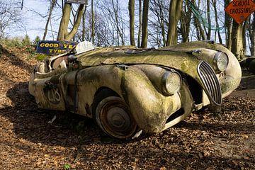 Verlassener Jaguar von Leoniek van der Vliet