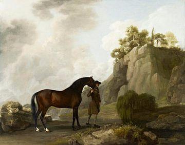 Der arabische Hengst des Marquis von Rockingham, George Stubbs