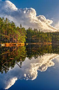 Reflexion auf dem Wasser von Tim Vrijlandt