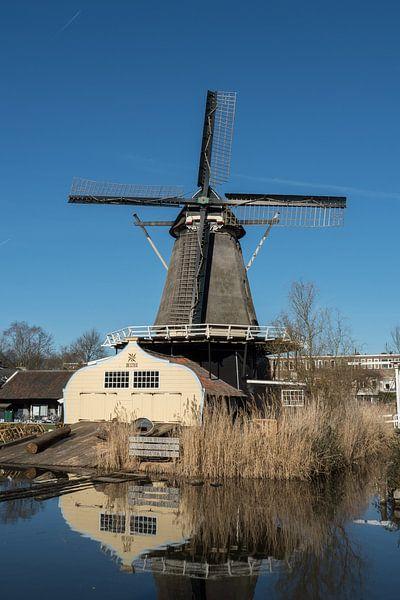 Molen de Ster in Utrecht langs de Leidsche Rijn in kleur van De Utrechtse Grachten