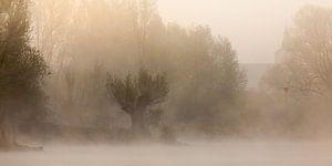 IJssel in de mist