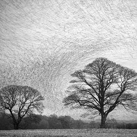 Murmuration of Common Starlings (Sturnus vulgaris) von AGAMI Photo Agency