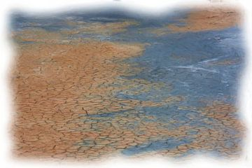 Verschroeide aarde van Maurice Dawson