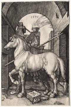 Le petit cheval, Albrecht Dürer sur De Canon