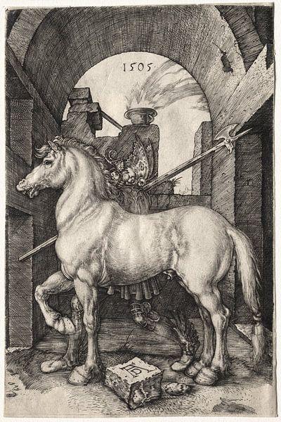 Das kleine Pferd, Albrecht Dürer von De Canon