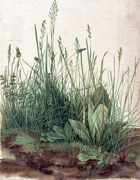 Albrecht Dürer. Das große Stück Rasen