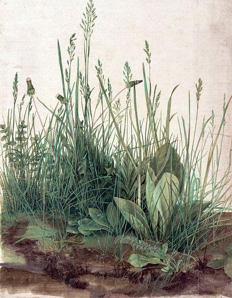 Albrecht Dürer. Het grote stuk gras (gezien bij vtwonen) van 1000 Schilderijen