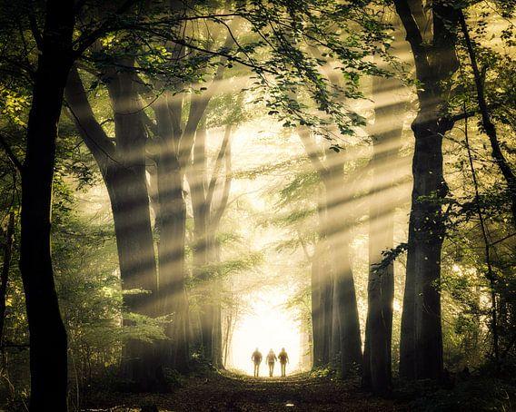 Magische wandeling.