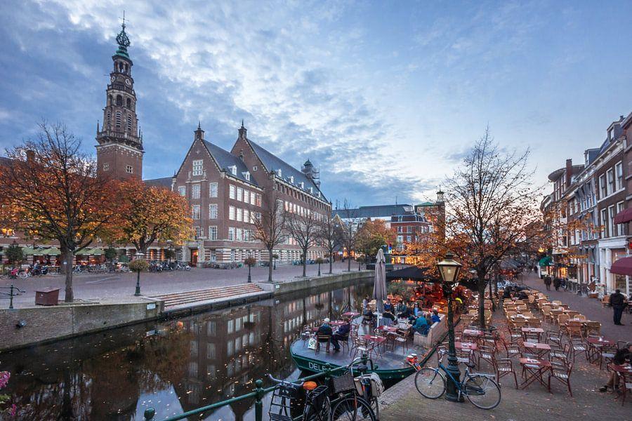 Nieuwe Rijn, Leiden van Jordy Kortekaas