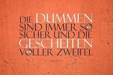 Dumme  |   Gescheite von Dirk H. Wendt