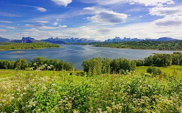 View of Tysfjorden van Gisela Scheffbuch