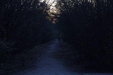Scary Path van Bram Jansen