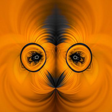 Fantasierijke abstracte twirlillustratie 114/29 van PICTURES MAKE MOMENTS