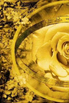 Eine gelbe Rose und eine alte Karte, die linke Hälfte. von Helga Blanke