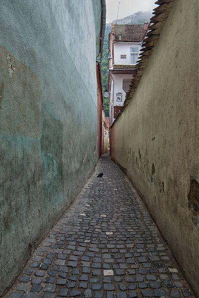 Strada Sforii van Hettie Planckaert