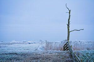 Winter landschap Leeuwarden (Friesland)  van